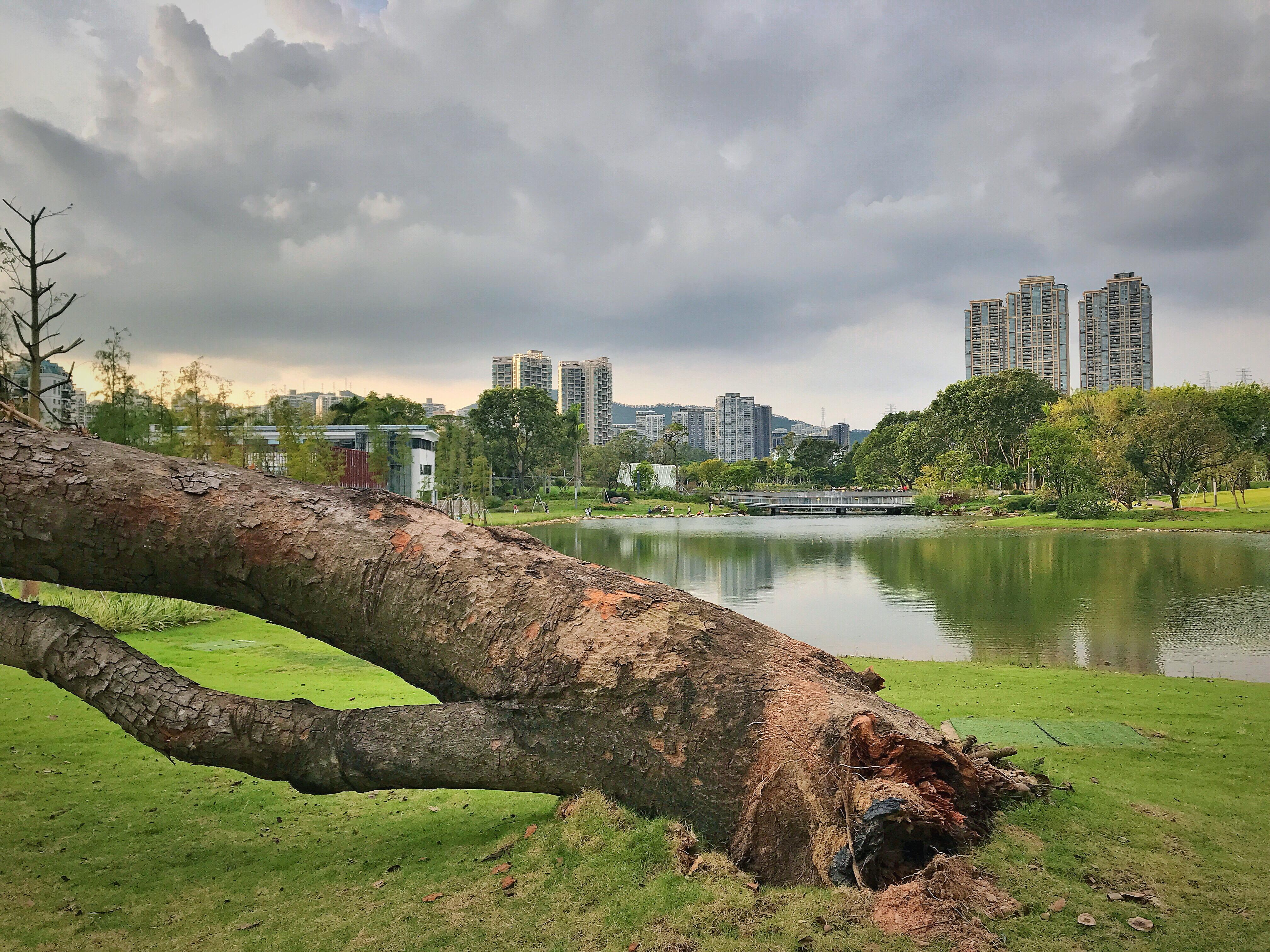 Shenzhen Typhoon Mangkhut